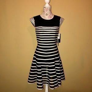 NWT.  Black & White Mesh Striped Cocktail Dress